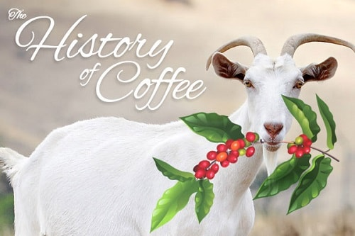 History of coffee