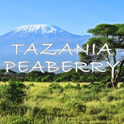 Tanzania Peaberry Coffee from Mount Kilimanjaro